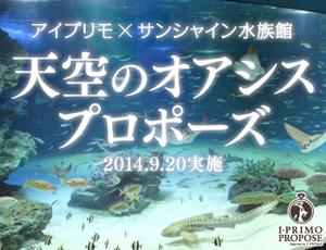 2人の始まりの場所でもう一度<br>ロマンチックな水族館プロポーズ