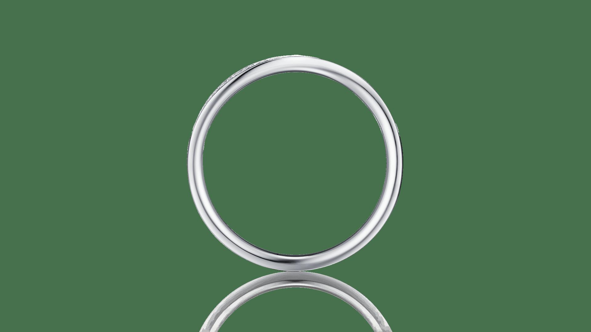 tritone LD トリトーネ LD | エタニティリングサムネイル 2
