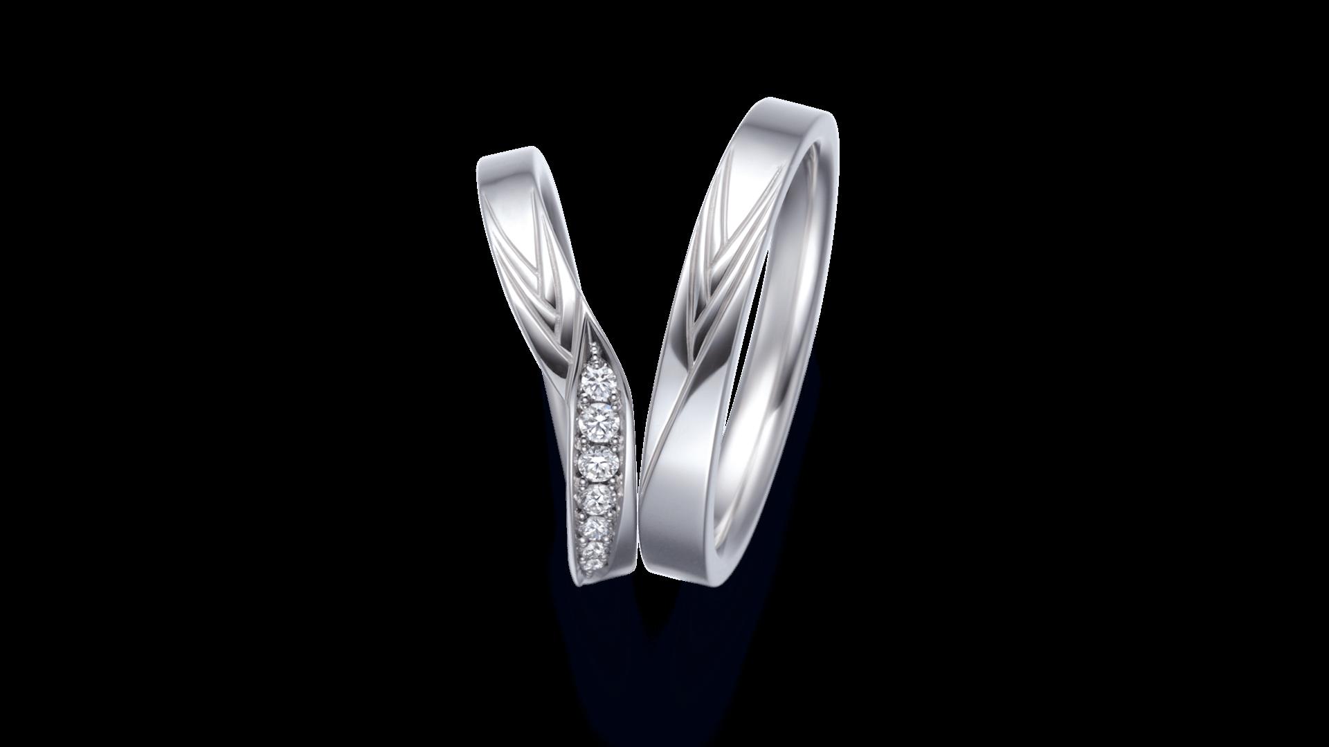 harutsuki 春月 | 結婚指輪サムネイル 2