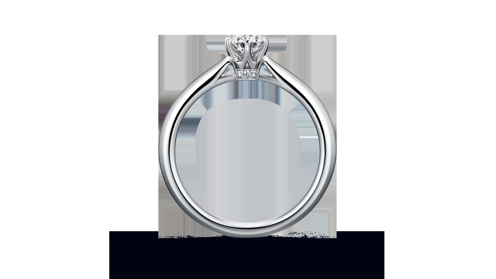 【NEW】hercules ヘラクレス≪11月2日(土)発売≫ | 婚約指輪サムネイル 2
