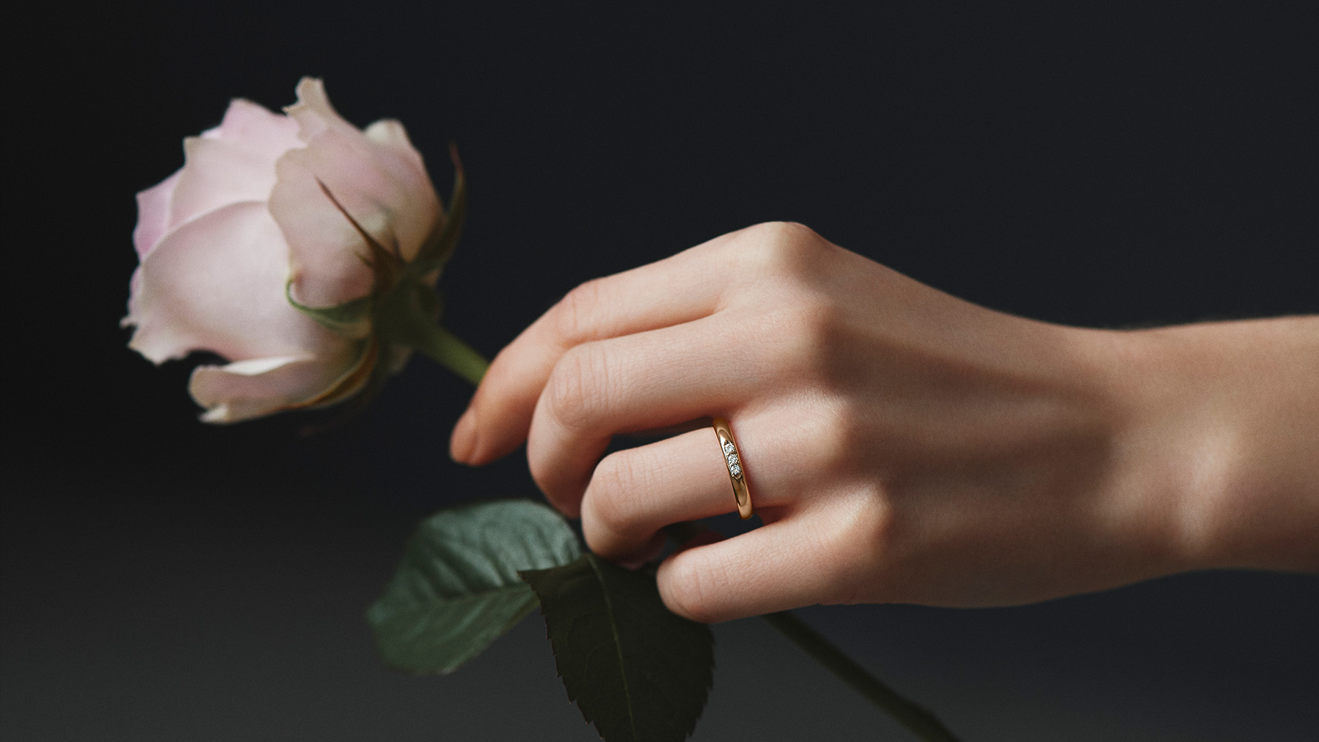 Origin Belief02 オリジンビリーフ02 | 結婚指輪サムネイル 4